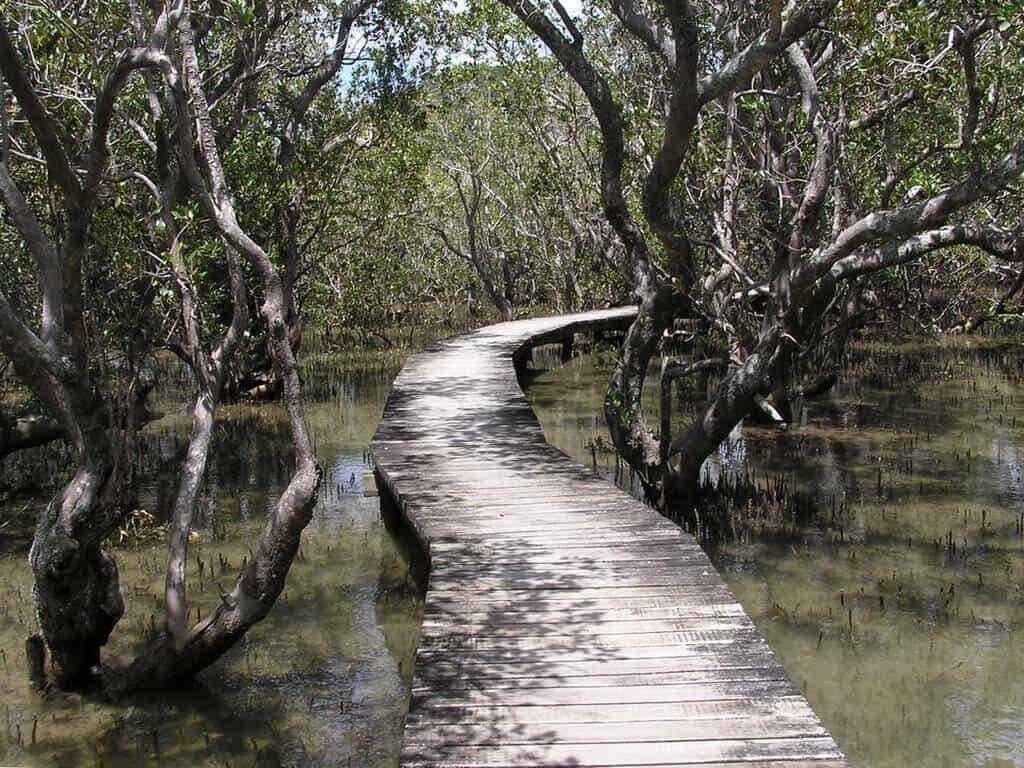 walking tracks Bay of Islands New Zealand